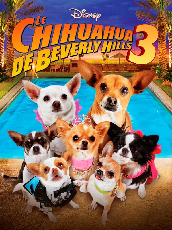 Affiche Le Chihuahua de Beverly Hills 3 : Viva La Fiesta !