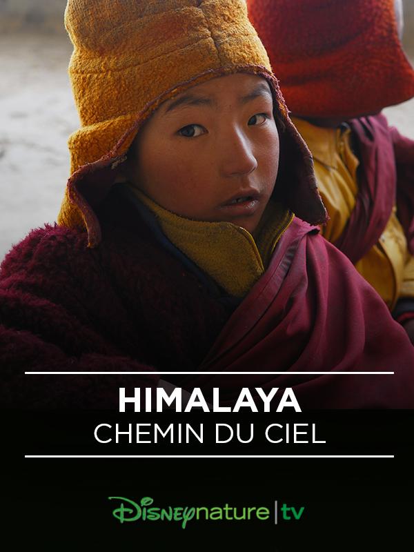 Affiche Himalaya, le chemin du Ciel
